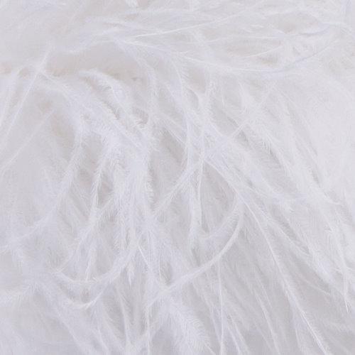 straussenboa_white